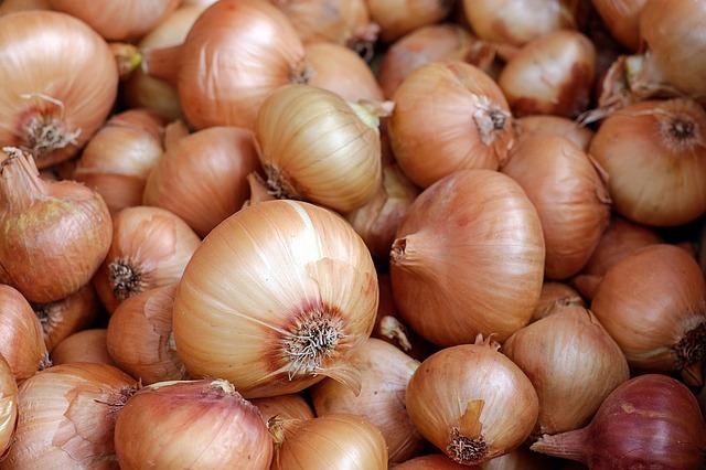 Onions 1397037 640