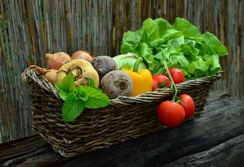 Vegetables 752153  340