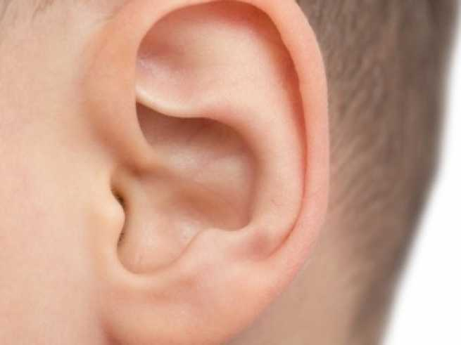 Ohrkorrektur